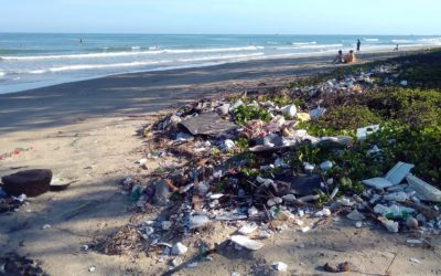 How plastic is affecting earth