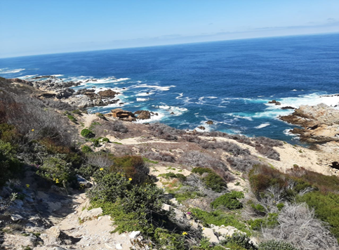 Blombos Private Nature Reserve GCBR Flexible Micro Fund