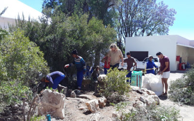 GCBR Flexible Micro Fund Grant to Revamp Veld and Medicinal Gardens at the Fransie Pienaar Museum in Prince Albert