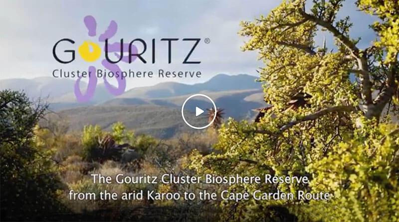 Gouritz Cluster Biosphere Reserve Videos
